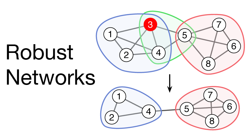Robust networks